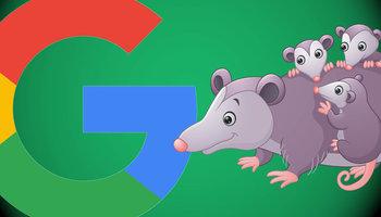 Как появление алгоритма Possum повлияло на выдачу