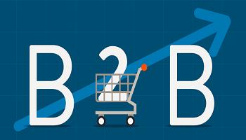 Как вести прибыльный B2B ecommerce бизнес